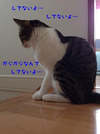 fc2blog_20140624185409e21.jpg