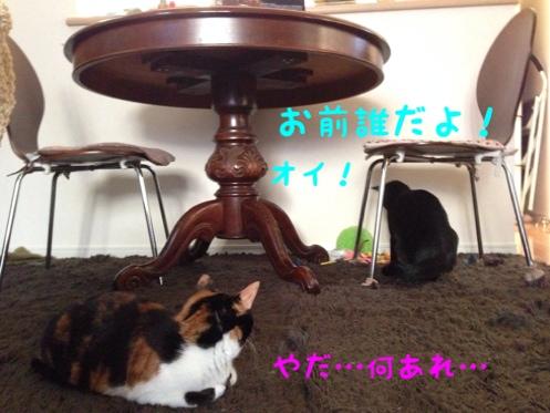 fc2blog_20140806184959305.jpg