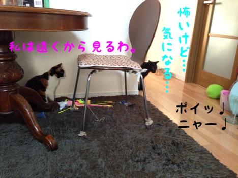 fc2blog_20140806185810383.jpg