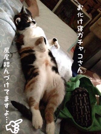 fc2blog_20140815134550f12.jpg