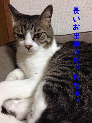 fc2blog_20140901124632cec.jpg