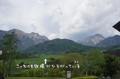 2014-133-8.jpg