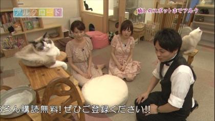 下北沢猫カフェ (6)