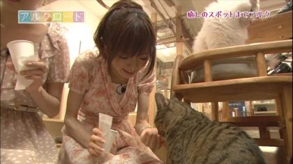 下北沢猫カフェ (2)