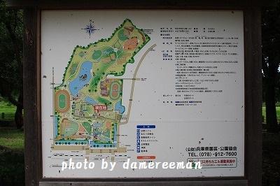 IMG_5019.jpg