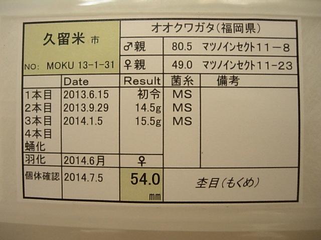 DSCN0612.jpg