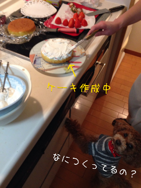 fc2_2014-02-06_22-01-09-712.png