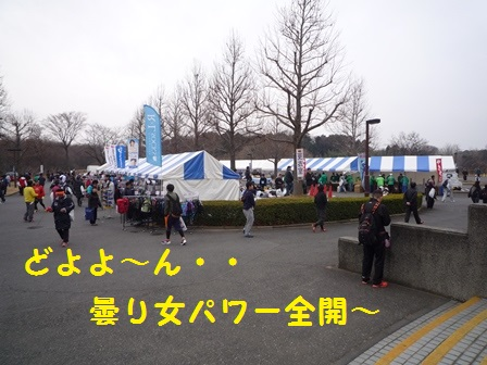 20140204142118057.jpg
