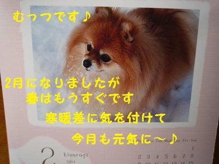 201402041421201a7.jpg