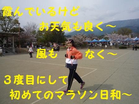 2014041611044133b.jpg