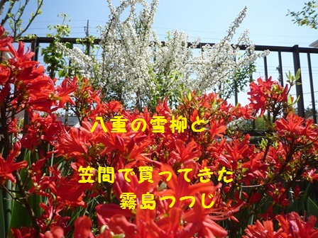 2014050711204109d.jpg