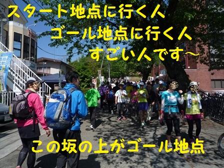 201405141304510cc.jpg