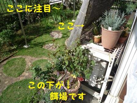 201407181242497fc.jpg