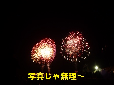 20140805100357e9a.jpg