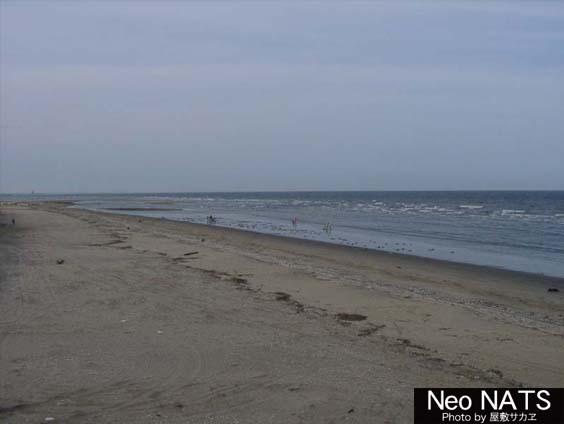 n_beach03.jpg