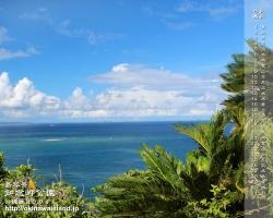 沖縄,壁紙,デスクトップカレンダー,海