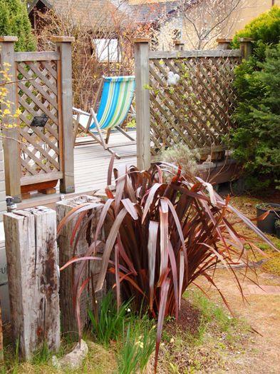 my-garden 167