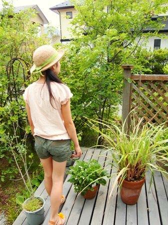 my-garden 141