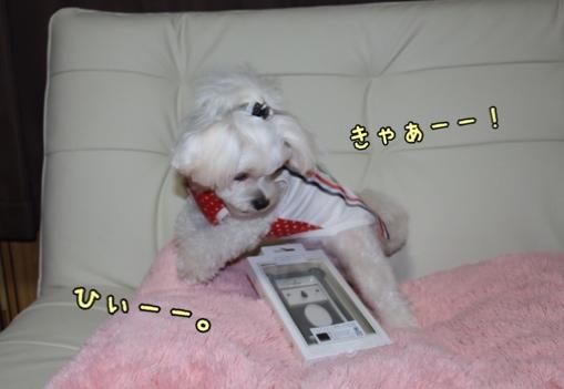 fc2blog_20140919101848505.jpg