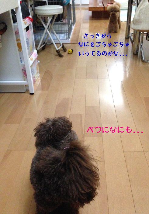 2014071908194546f.jpg