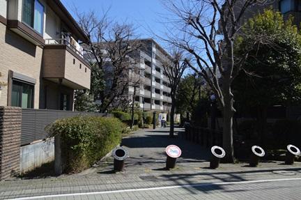 2014-03-22_31.jpg