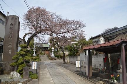 2014-03-29_31.jpg