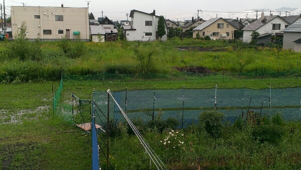 fc2_2014-08-07_19-50-12-168.jpg