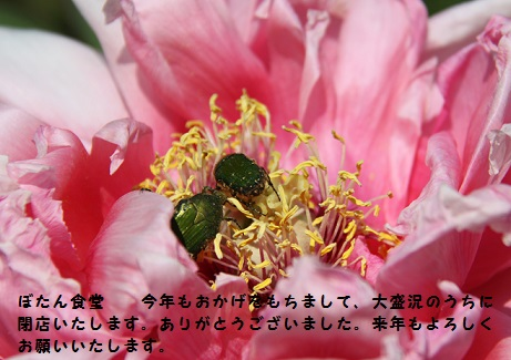20140426230935b1b.jpg