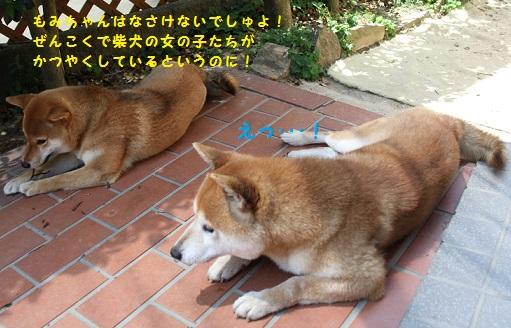 20140629130717c69.jpg