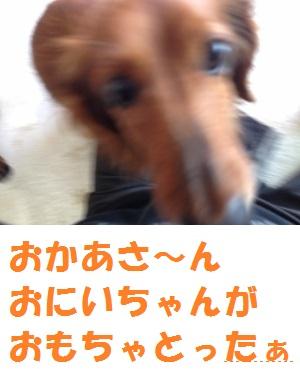 20140524113425ab0.jpg