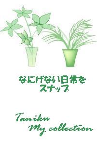 by ケイコ