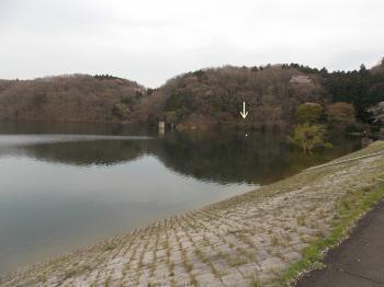 20140424_17.jpg