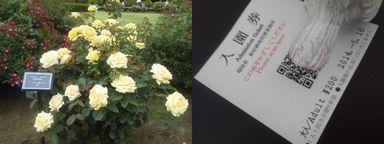 gyoen20140516.jpg