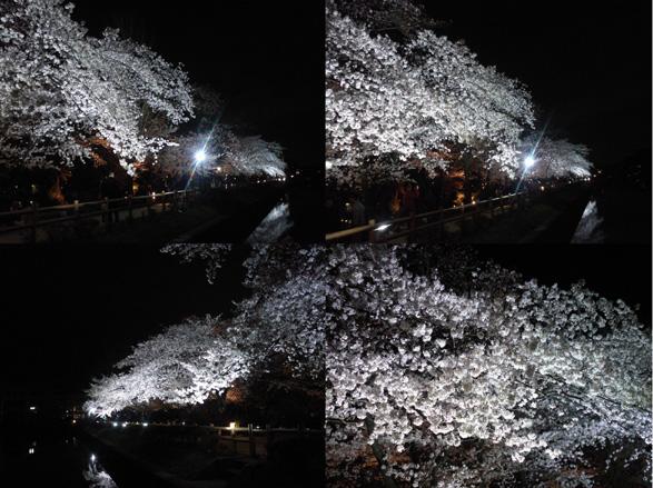 20140402nagaoka-tenmangu.jpg