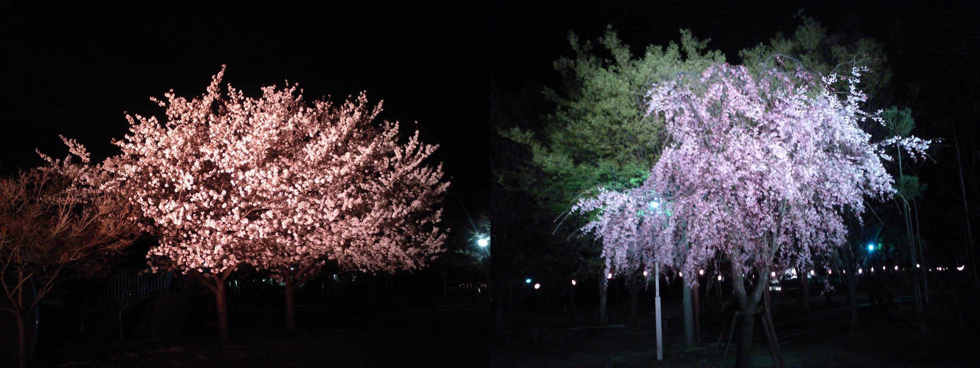20140404rakusaijyokacenter.jpg