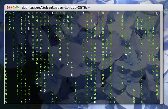 CMatrix Ubuntu 端末 スクリーンセーバー