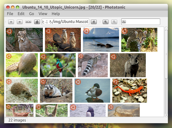Phototonic Ubuntu 画像ビューア サムネイル Compact View