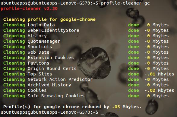 Profile-cleaner Ubuntu ブラウザ 高速化 コマンド プロファイルのクリーニング