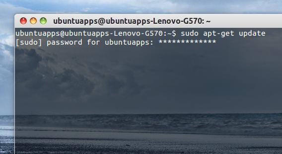 Ubuntu 端末 パスワード入力 アスタリスクの表示