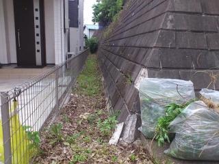 擁壁の隙間の草刈り_02